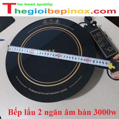 Bếp lẩu 2 ngăn âm bàn 3000w giá rẻ Hà Nội - Hồ Chí Minh